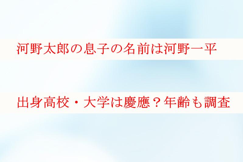 河野太郎の息子の名前は河野一平で大学は慶應?年齢などについても